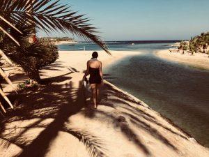 Rust zeezijde Egypte palmboom